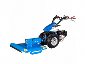 BCS brush cutter • rental