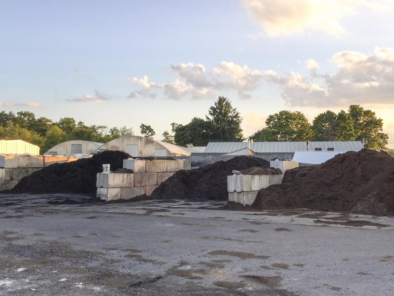 Picture of different colors of mulch at Jono Ace hardware